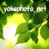 無料壁紙写真素材集/いやしの風景/相互リンク